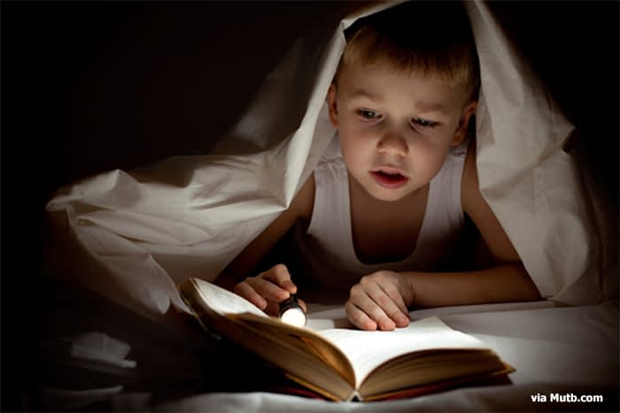 Easy Ways to Designate Space for Reading with Your Kids