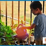 5 Amazing Benefits of Gardening with Kids